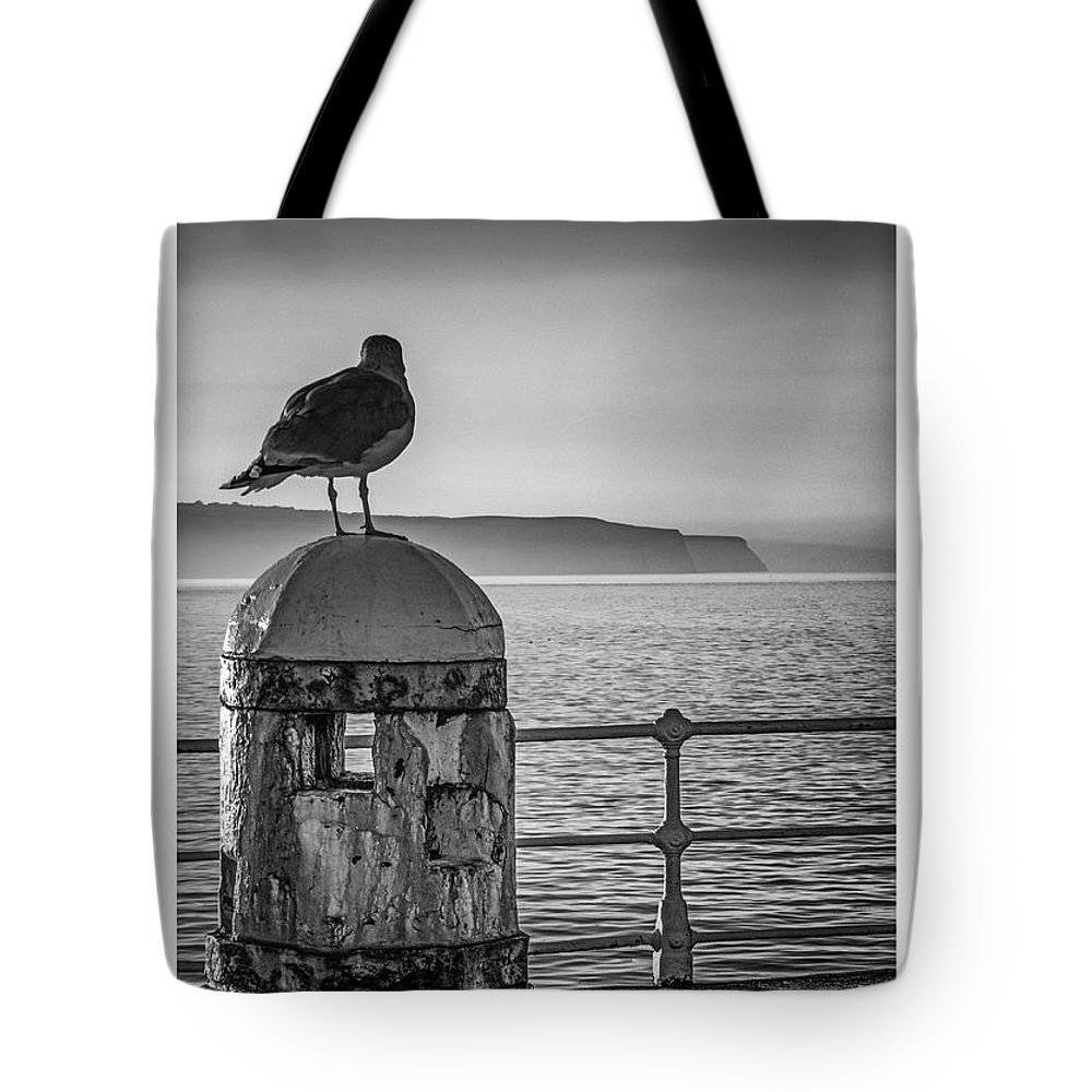 Whitby Pier Tote Bag featuring the photograph Whitby Pier by Phil Fiddyment