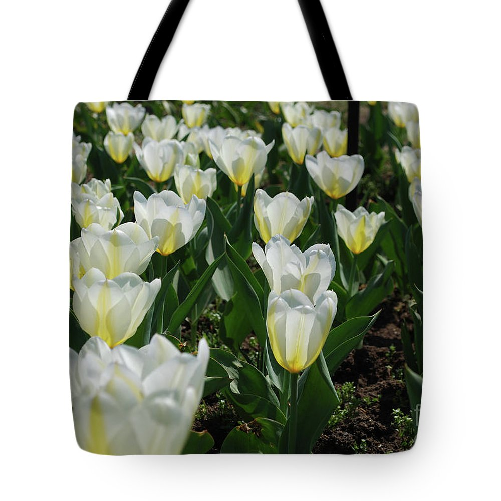 Tulip Tote Bag featuring the photograph White And Pale Yellow Tulips In A Bulb Garden by DejaVu Designs