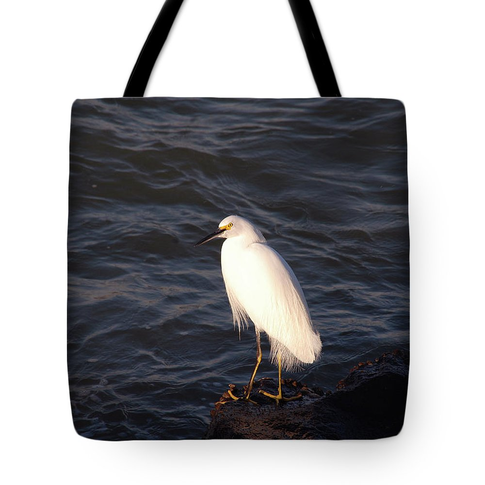 Fishing Bird Tote Bag featuring the photograph White As Snow by Susanne Van Hulst