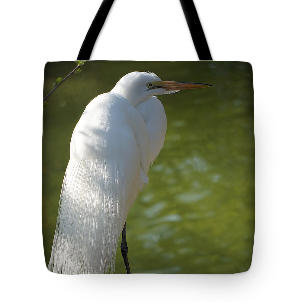 Ann Keisling Tote Bag featuring the photograph White Beauty Of The Marsh by Ann Keisling