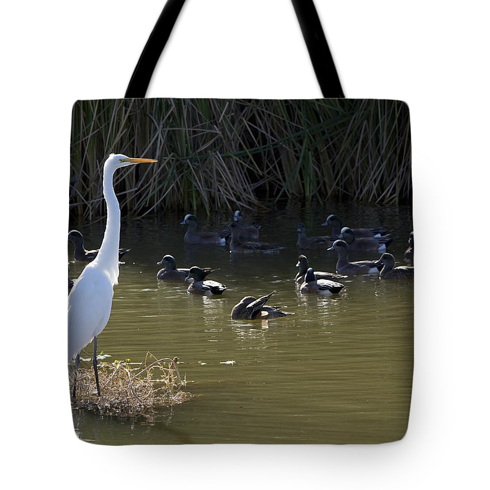 Heron Tote Bag featuring the photograph White Beauty by Phyllis Denton