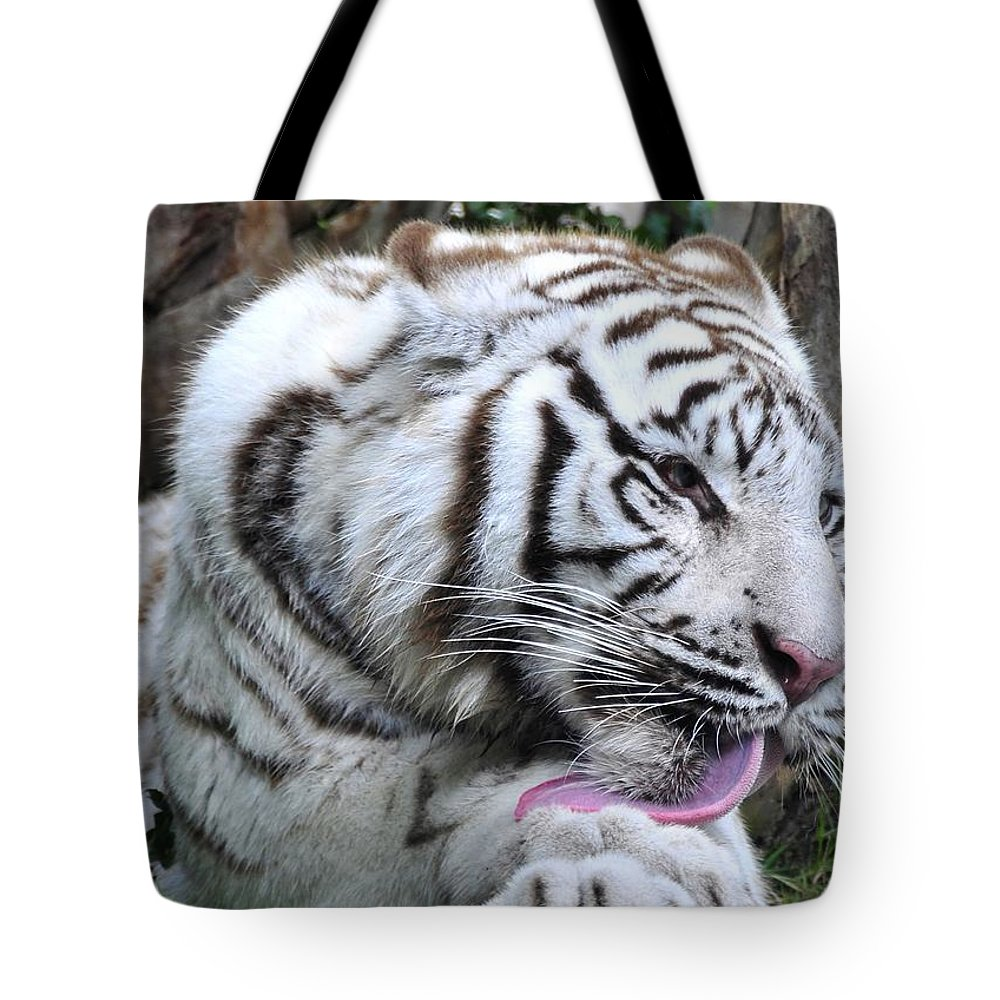 Tiger Tote Bag featuring the photograph White Bengal Tiger by David Lee Thompson