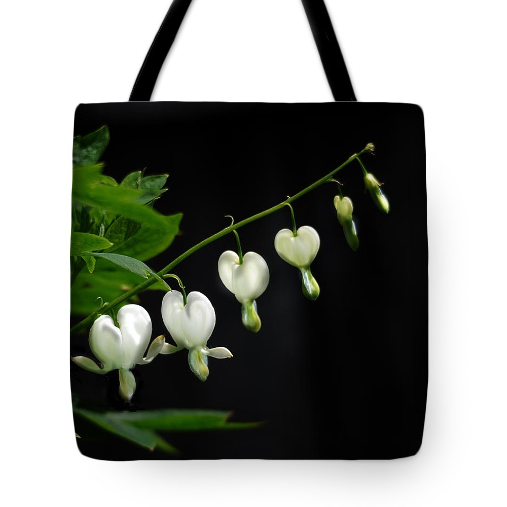 Nature Tote Bag featuring the photograph White Bleeding Hearts by Susan Capuano