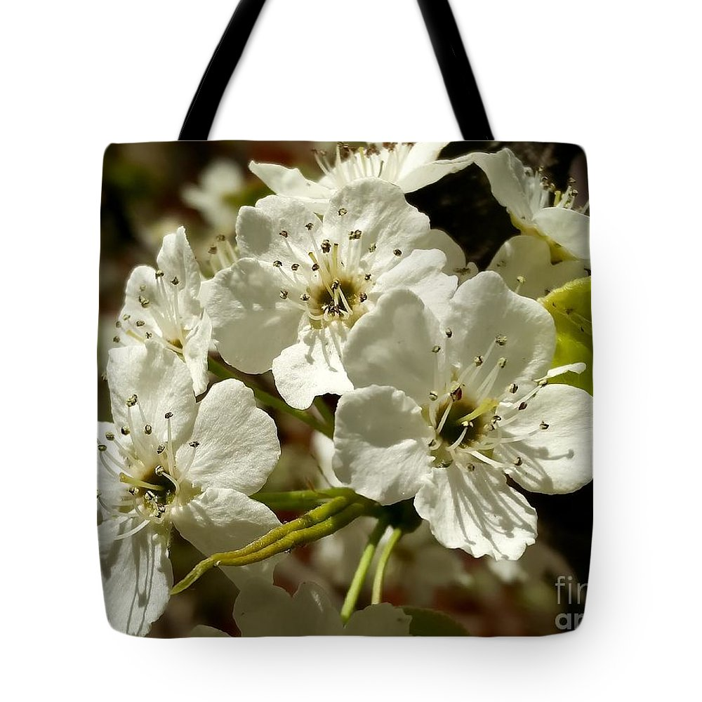 Blossoms Tote Bag featuring the photograph White Blossom by Mioara Andritoiu