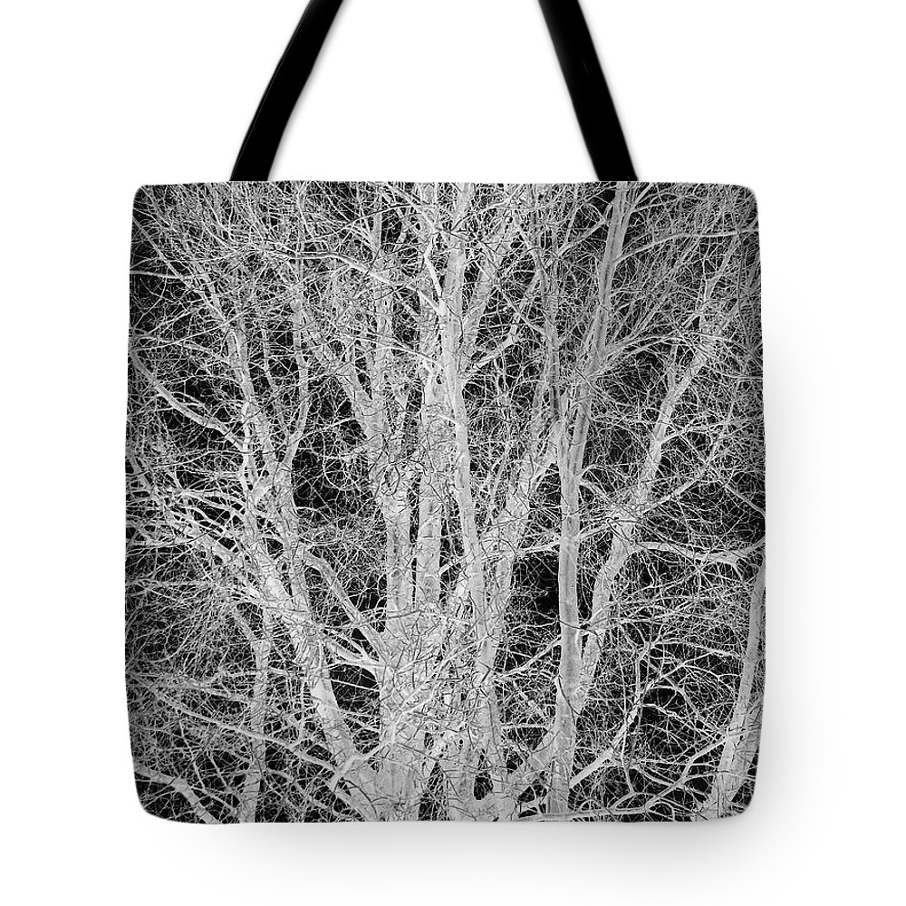 Tree Tote Bag featuring the digital art White Branches by Munir Alawi