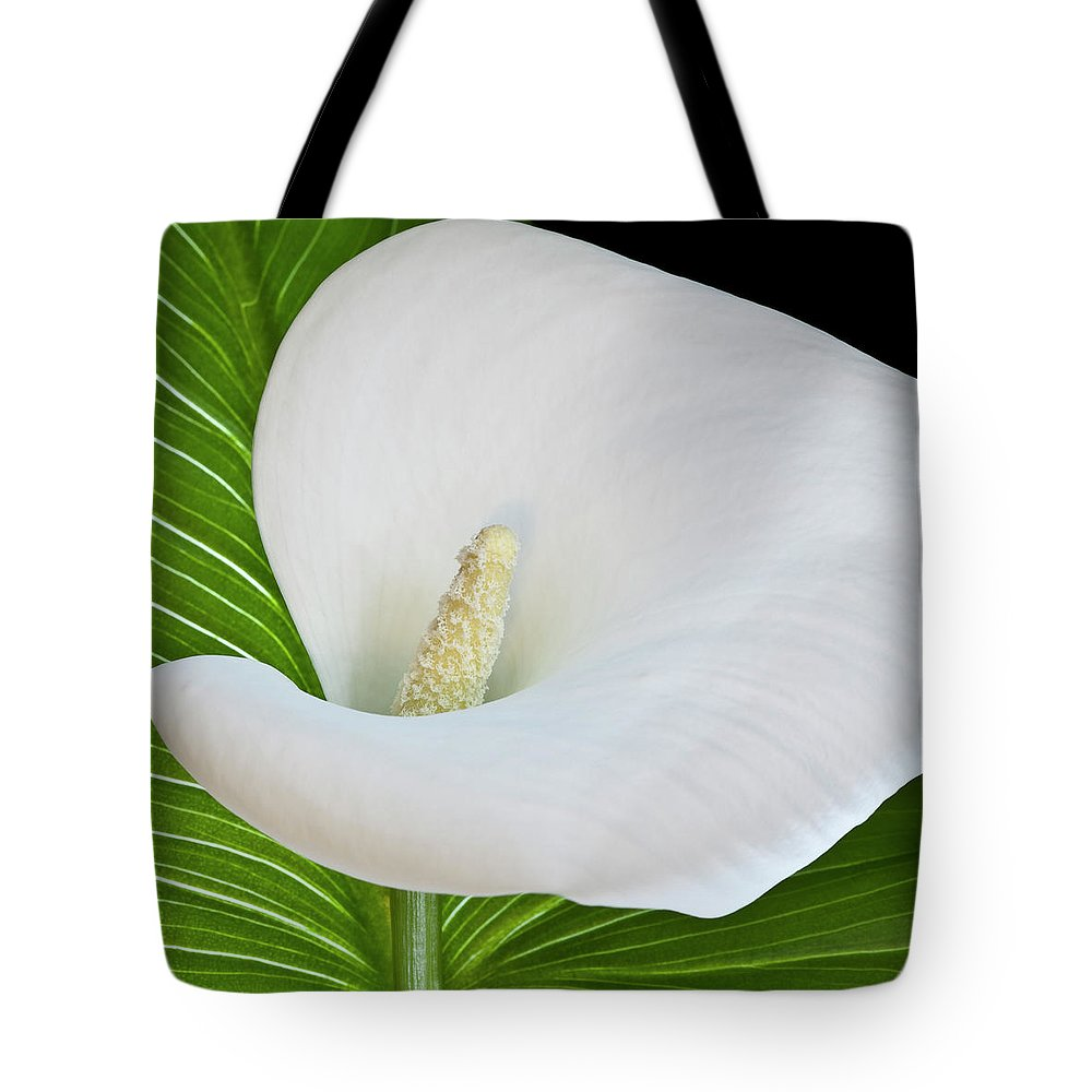 Calla Tote Bag featuring the photograph White Calla by Heiko Koehrer-Wagner
