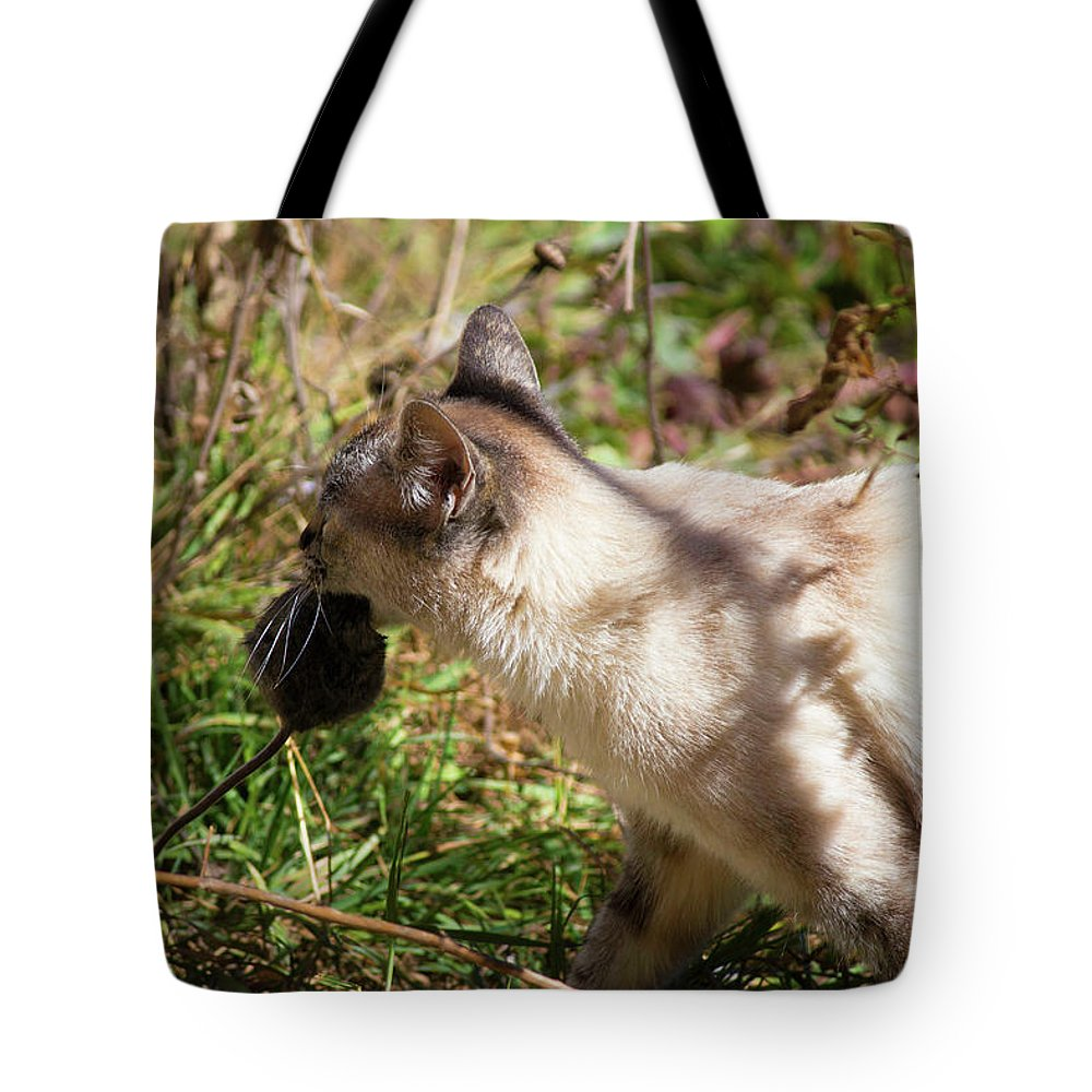 White Cat Tote Bag featuring the photograph White Cat On The Hunt by Seb Estrada