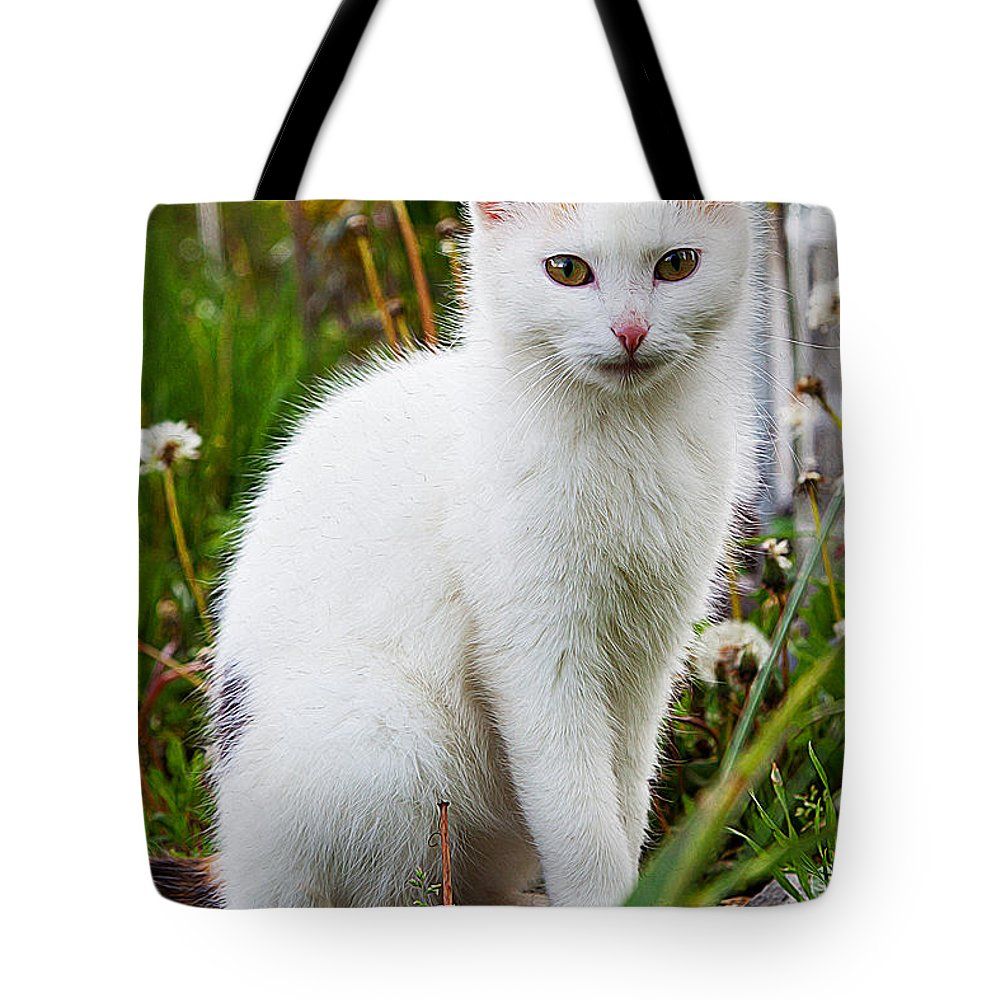 Cat Art Tote Bag featuring the painting White Cat Sitting by Queso Espinosa