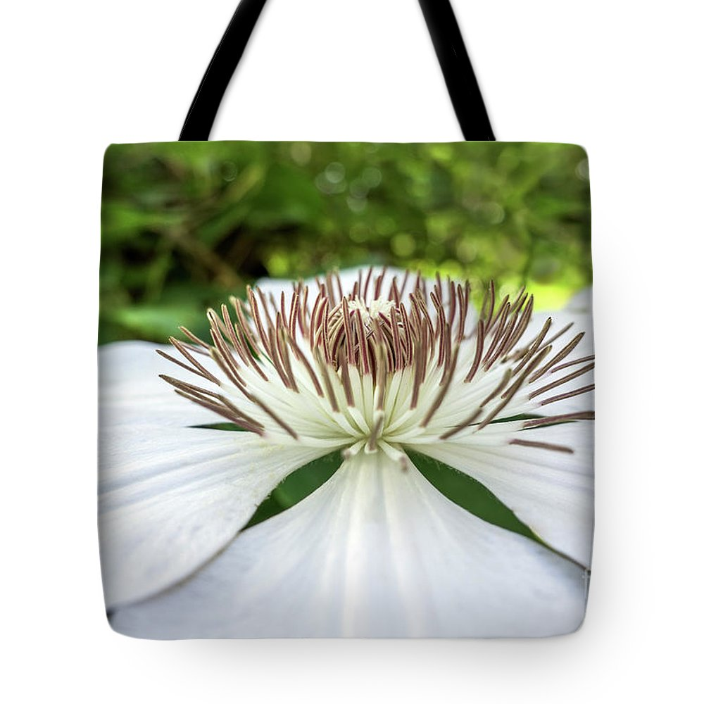 50146 Tote Bag featuring the photograph White Clematis Flower Garden 50146 by Ricardos Creations