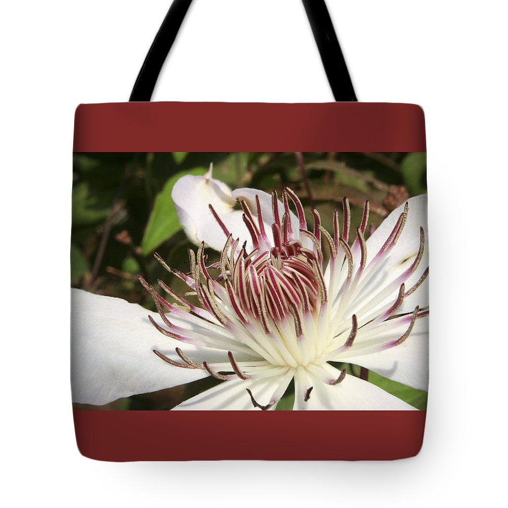 Clematis Tote Bag featuring the photograph White Clematis Henryi by Margie Wildblood