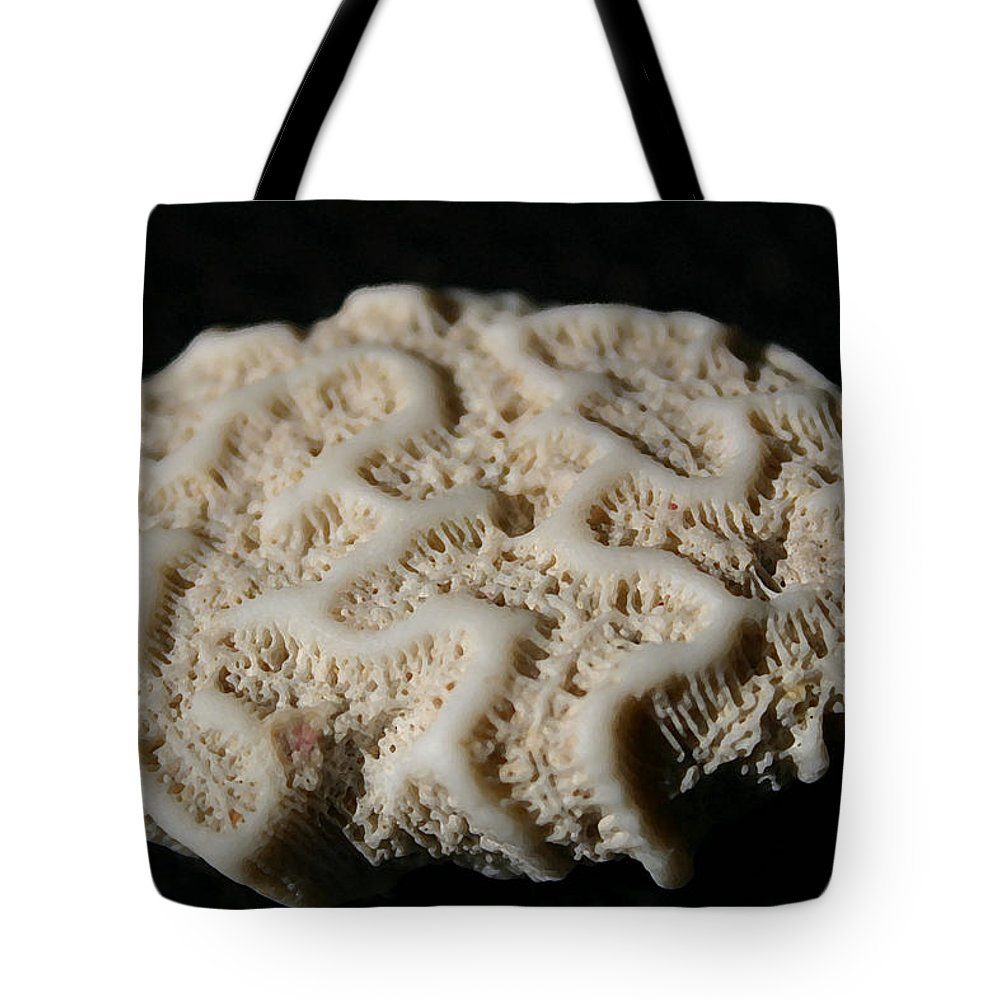 Coral Tote Bag featuring the photograph White Coral by Mary Haber