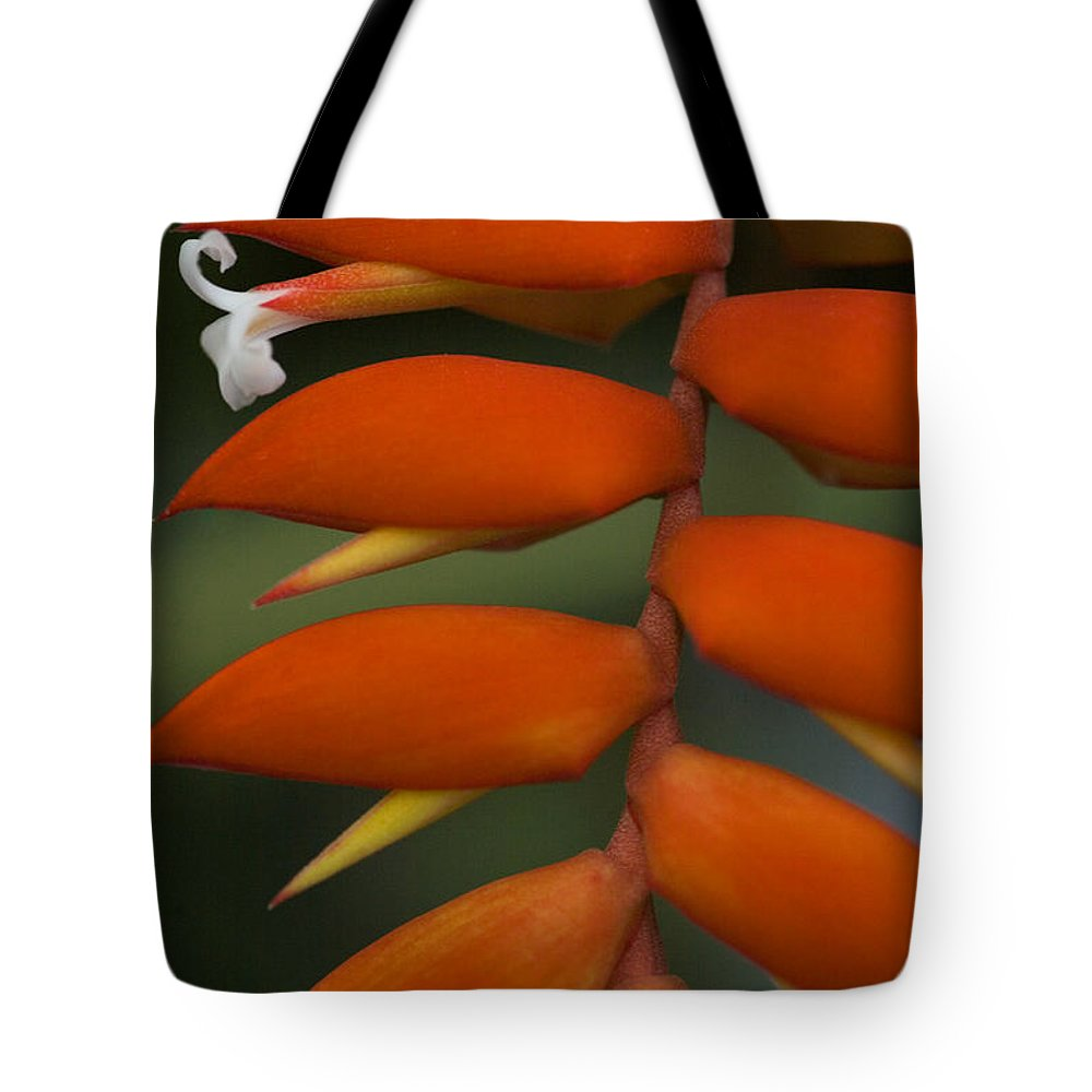 Heliconia Tote Bag featuring the photograph White Flower by Karen Ulvestad