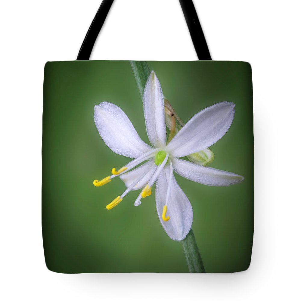 Abstract Tote Bag featuring the photograph White Flower by Lynn Geoffroy