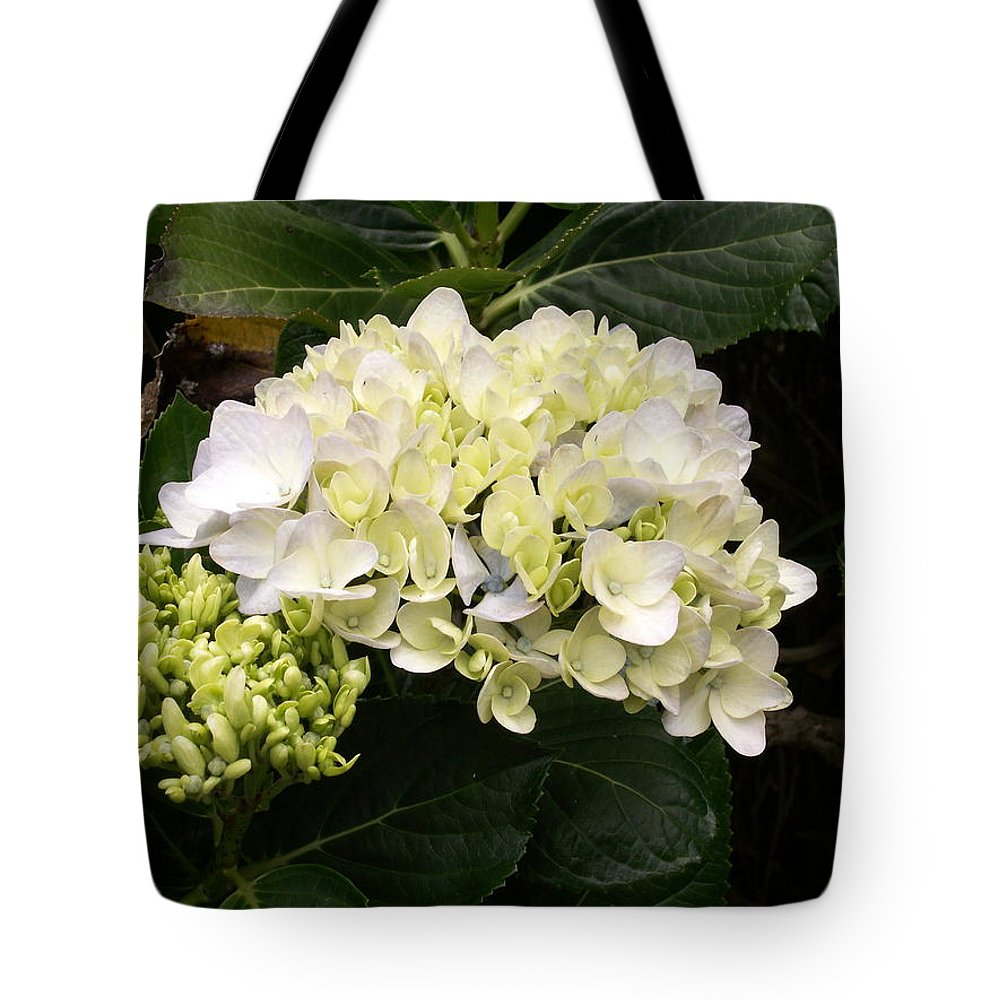 Flower Tote Bag featuring the photograph White Hydrangeas by Amy Fose