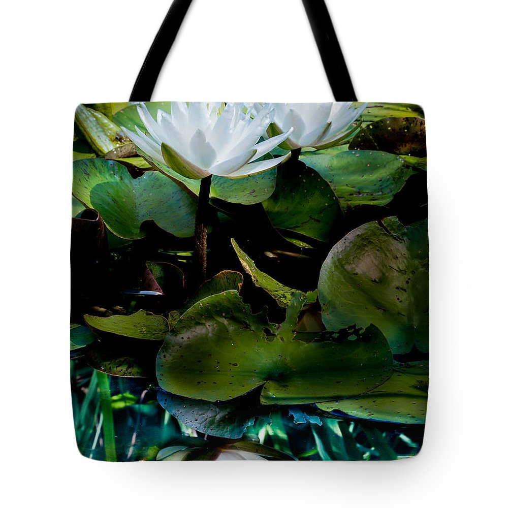 Water Lilies Tote Bag featuring the photograph White Lilies, White Reflection by Paula Ponath