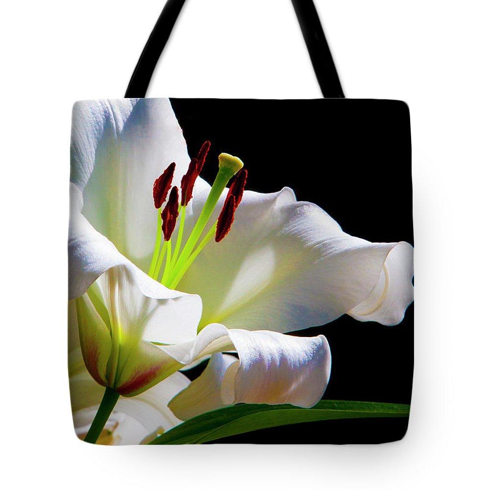 Botanico Tote Bag featuring the photograph White Lilium by Philip Enticknap