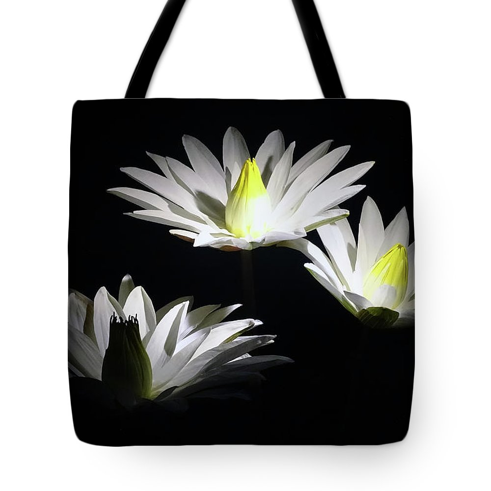 Lily Pads Tote Bag featuring the photograph White Lillies by Deborah England