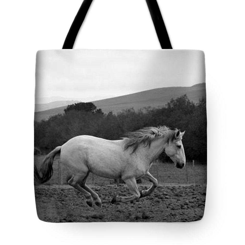 Rtf Ranch Tote Bag featuring the photograph White Mare Gallops #1 - Panoramic Black And White by Heather Kirk