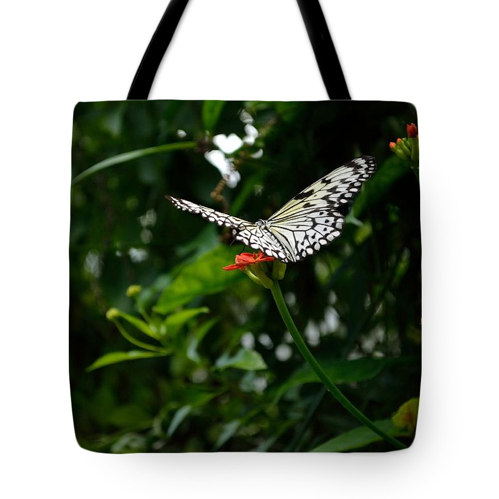 Butterfly Tote Bag featuring the photograph White Monarch -0 by James Fowler