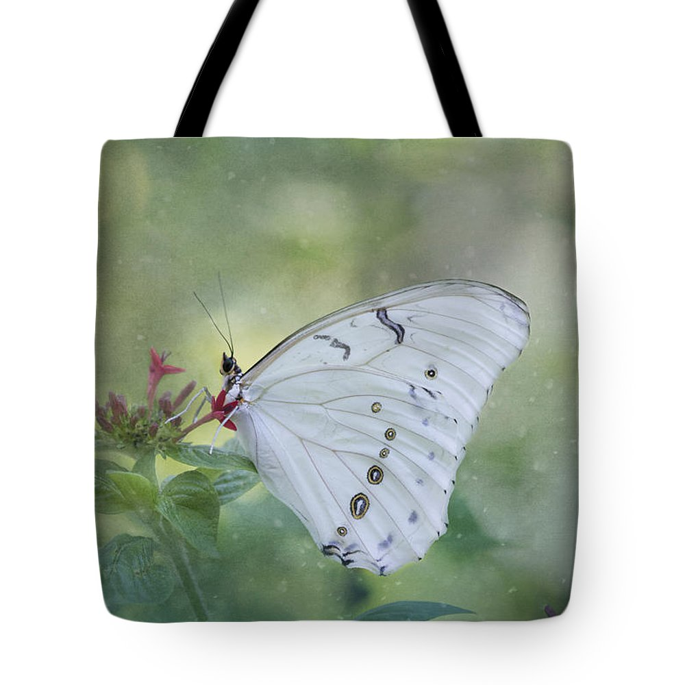 Butterfly Tote Bag featuring the photograph White Morpho Butterfly by Kim Hojnacki