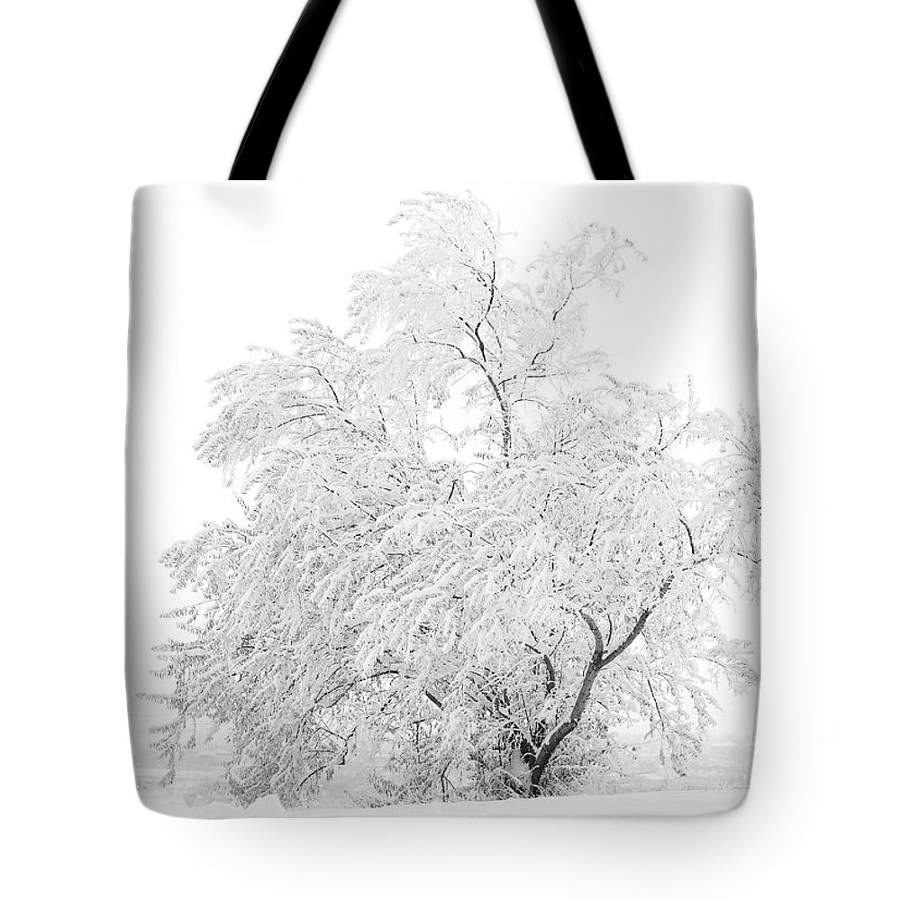Snow Tote Bag featuring the photograph White on White by Marilyn Hunt
