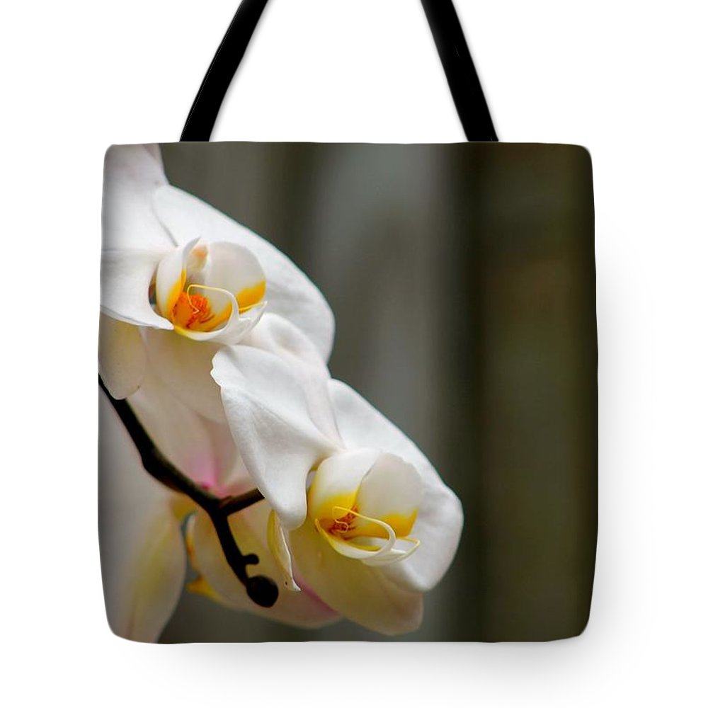 Flower Tote Bag featuring the photograph White Orchid by Amber Sims