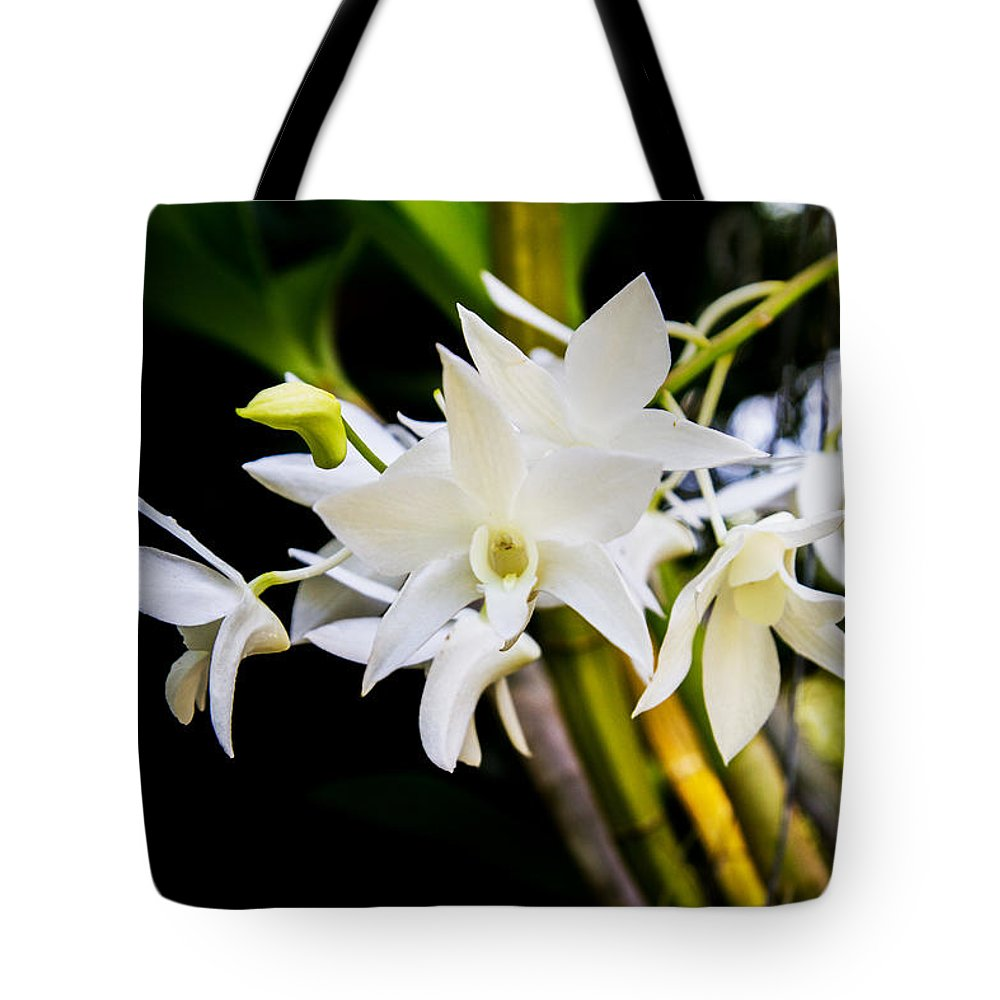Orchid Tote Bag featuring the photograph White Orchid by J Darrell Hutto