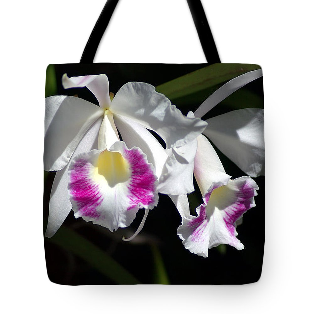 Photography Tote Bag featuring the photograph White Orchids by Susanne Van Hulst