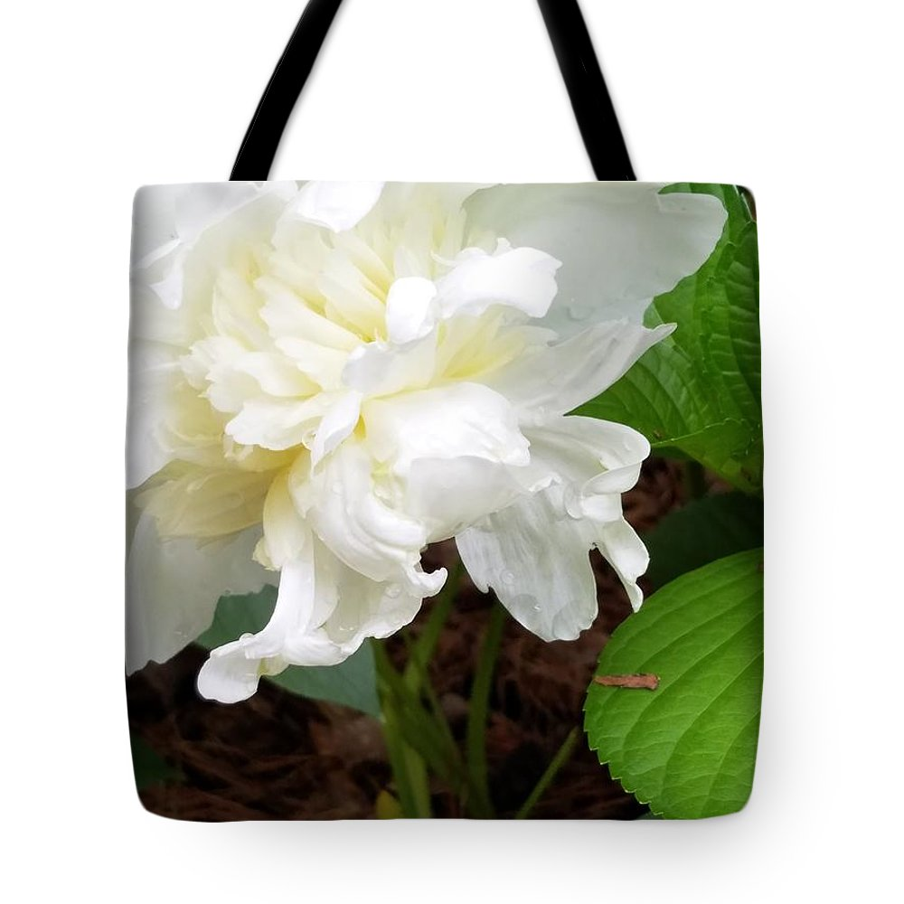 Tote Bag featuring the photograph White Peonia by Teresa Doran