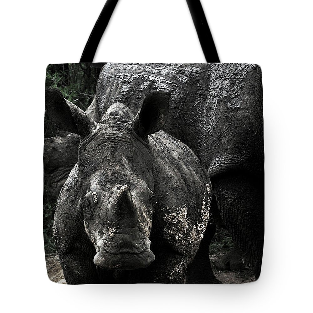 Africa Tote Bag featuring the photograph White Rhinos by Steve Evans
