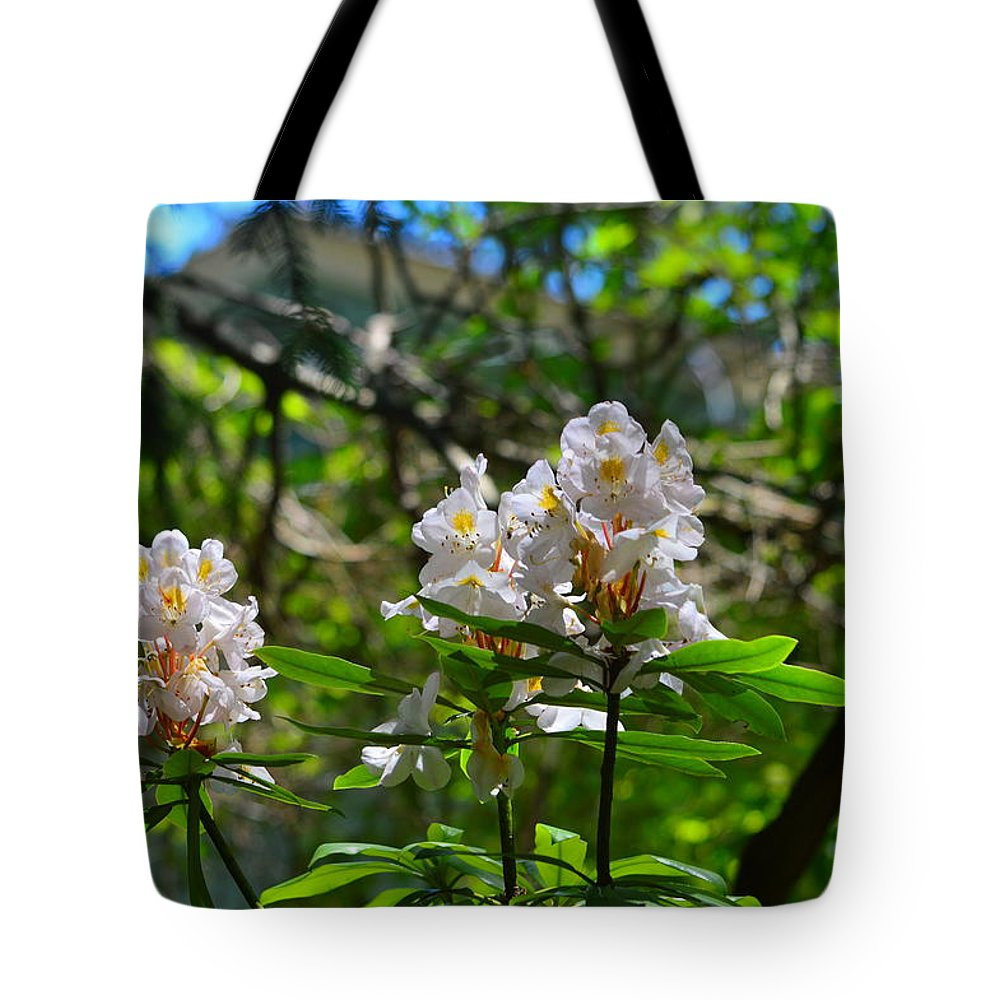 Rhododendron Tote Bag featuring the photograph White Rhododendron Blooms by Stacie Siemsen