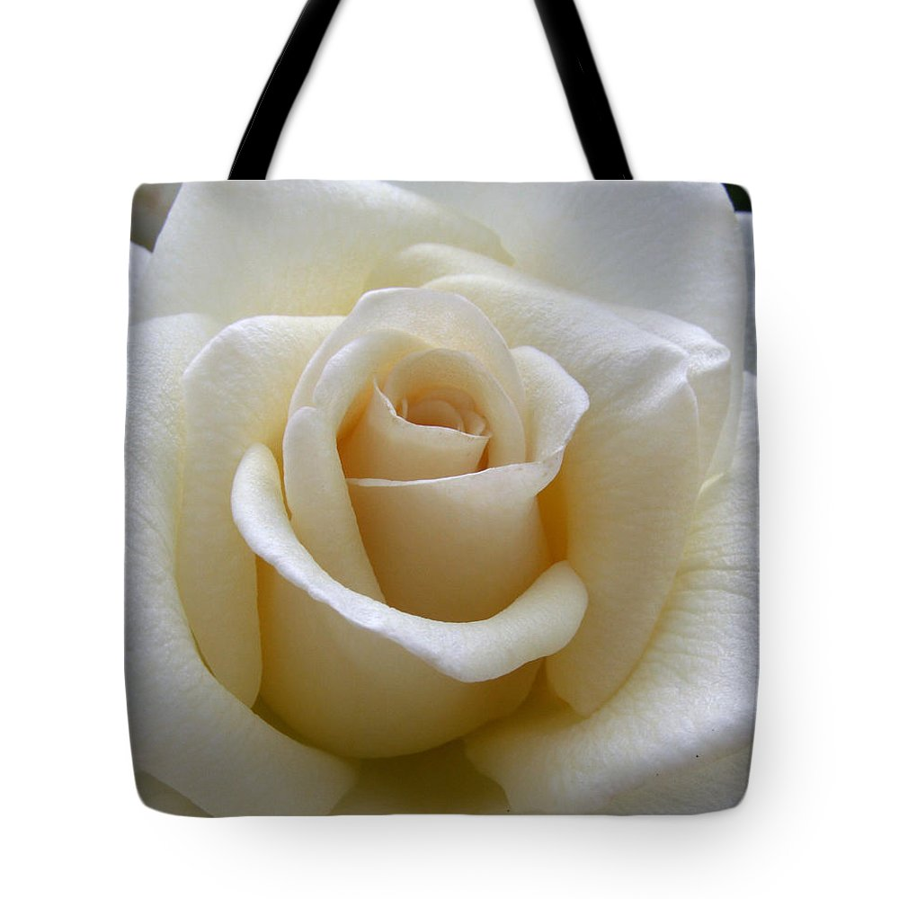 Roses Tote Bag featuring the photograph White Rose by Amy Fose