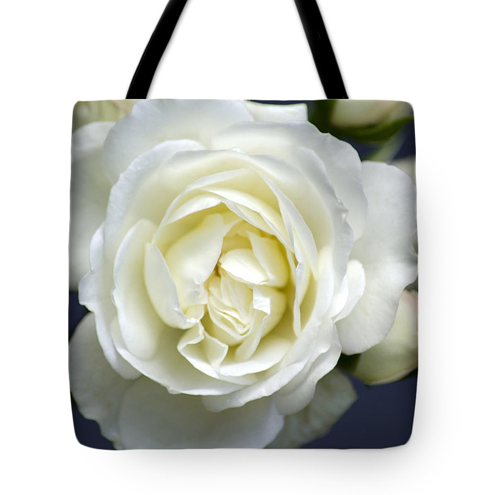Rose Tote Bag featuring the photograph White Rose Bloom by Christina Rollo