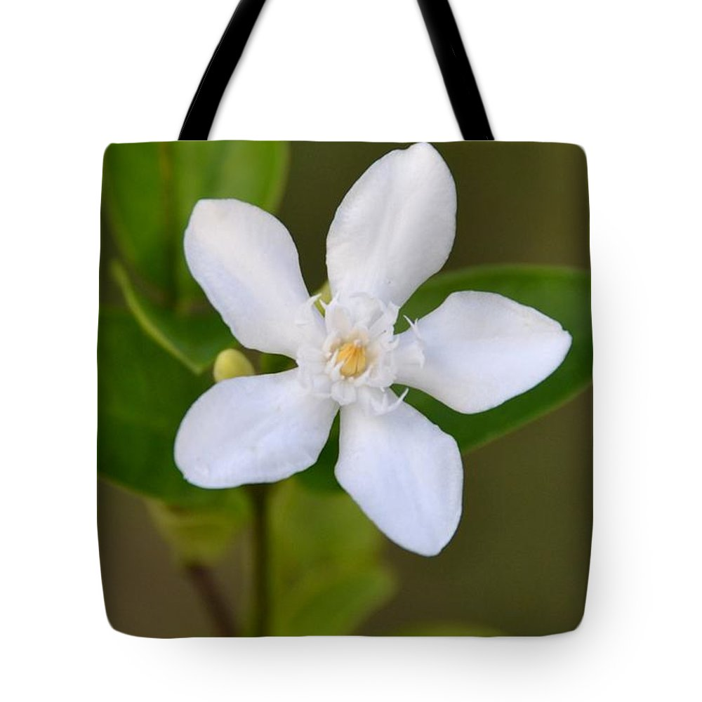 White Star Flower Tote Bag featuring the photograph White Star Flower by Darla Wood