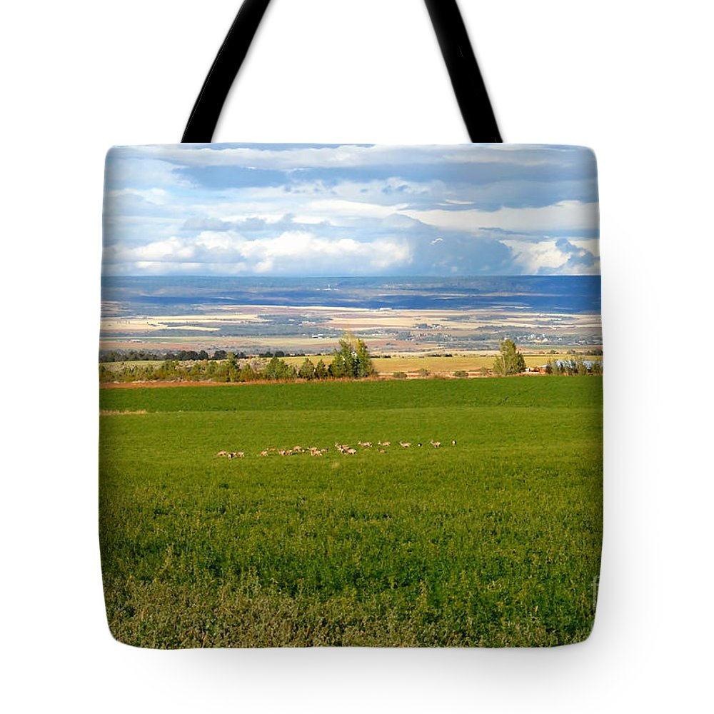 White Tail Deer Tote Bag featuring the photograph White Tails In The Field by David Lee Thompson