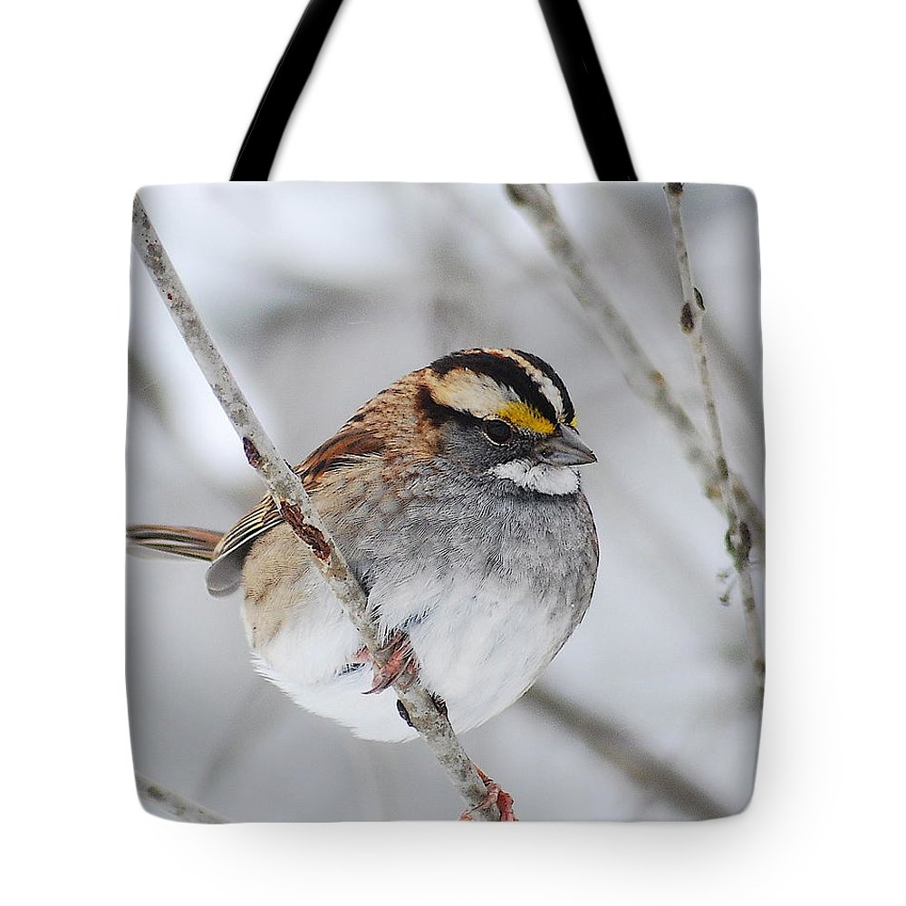 White-throated Sparrow Tote Bag featuring the photograph White Throated Sparrow by Michael Peychich