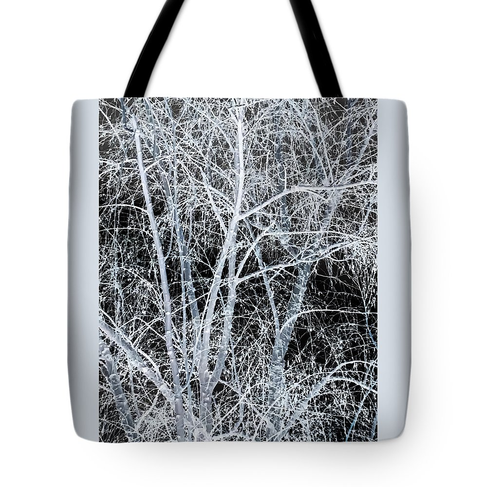 White Tree Black Night Tote Bag featuring the photograph White Tree Black Night by Heather Joyce Morrill
