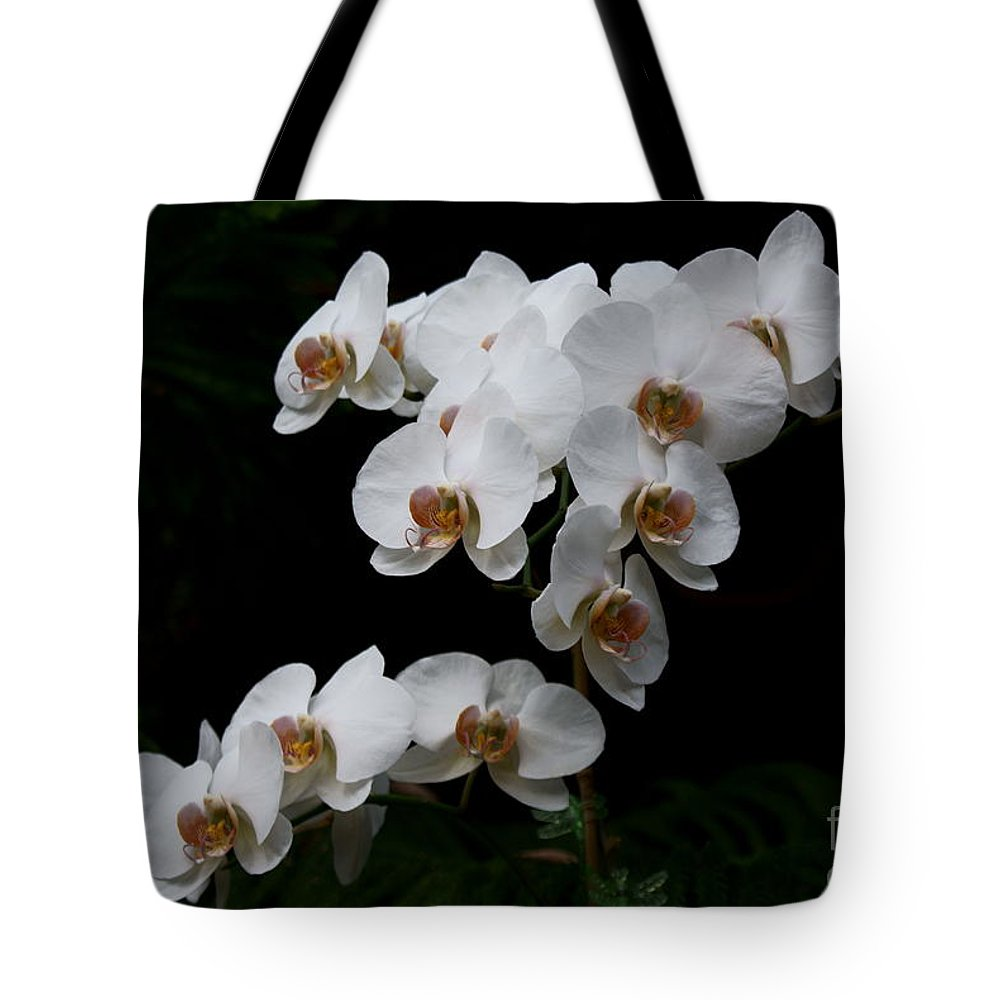 Phylanopsis Orchid Tote Bag featuring the photograph White Velvet by Joanne Smoley