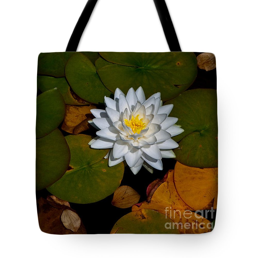 Beautiful Tote Bag featuring the photograph White Water Lily by Venetta Archer