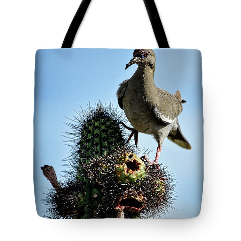 White Winged Dove Tote Bag featuring the photograph White Winged Dove by Saija Lehtonen
