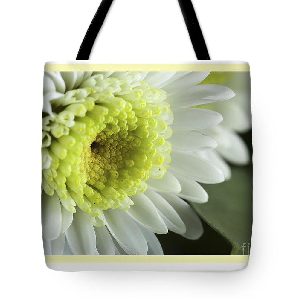 Flowers Tote Bag featuring the photograph White Mum Card by Donna Crider