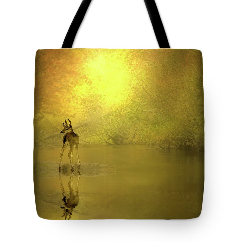 Buck Tote Bag featuring the photograph A Silent Autumn Morning by Diane Schuster