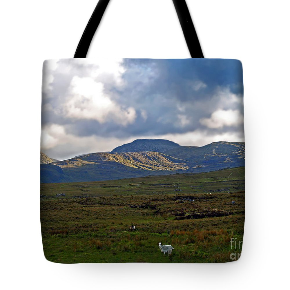 Fine Art Photography Tote Bag featuring the photograph Who You Lookin' At by Patricia Griffin Brett