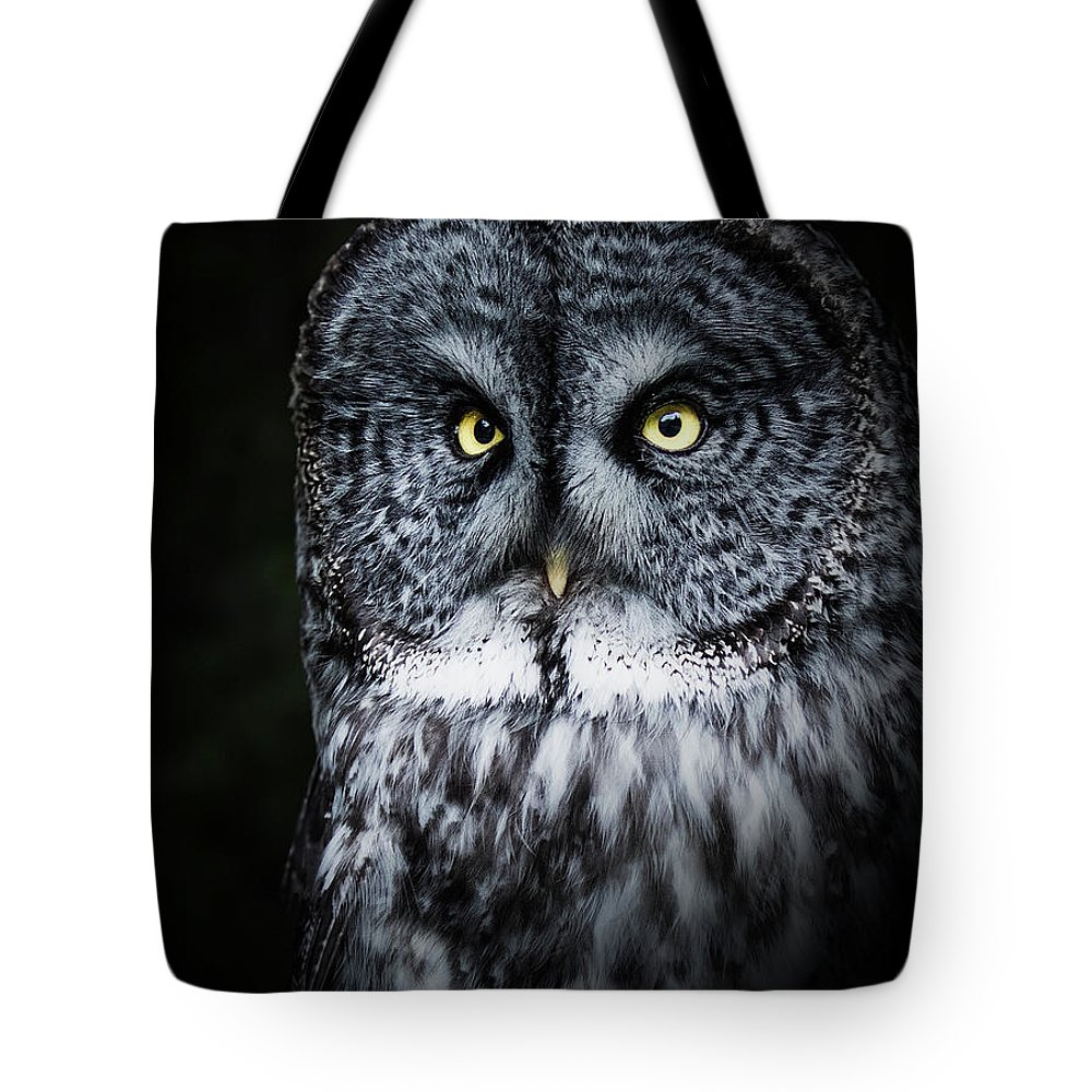 Bird Tote Bag featuring the photograph Whooo Are You Looking At? by Bruce Bonnett