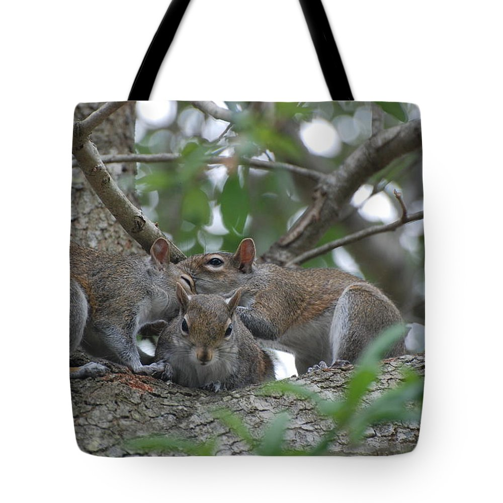 Squirrel Tote Bag featuring the photograph Why Me by Rob Hans