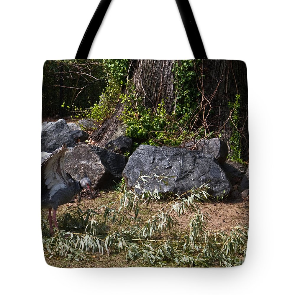 Wicked Tote Bag featuring the photograph Wicked Bird by Douglas Barnett