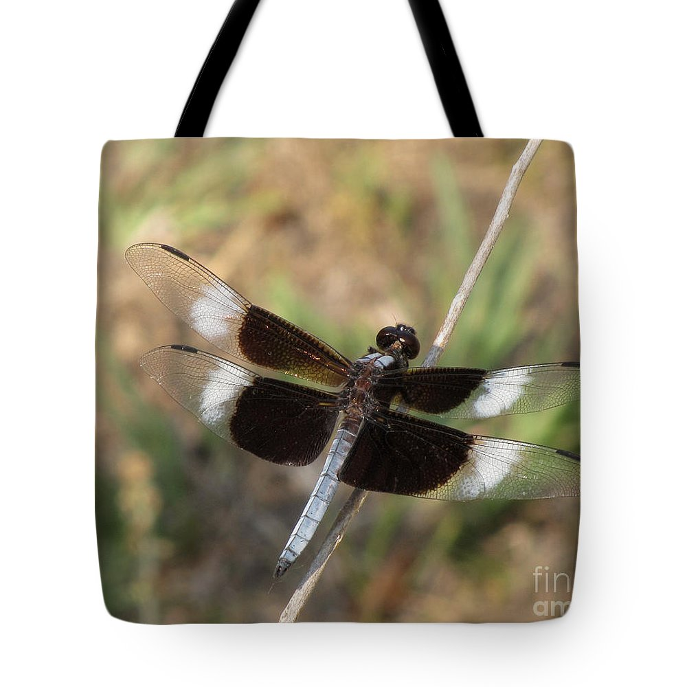 Dragonfly Tote Bag featuring the photograph Widow Skimmer Dragonfly Male by Donna Brown