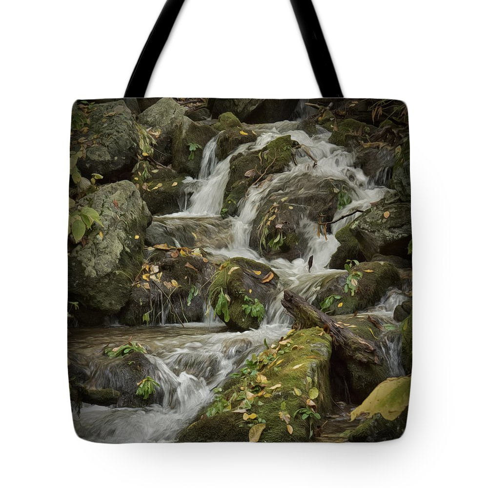 Wigwam Falls Tote Bag featuring the photograph Wigwam Falls Blue Ridge Parkway by Dawn Gari