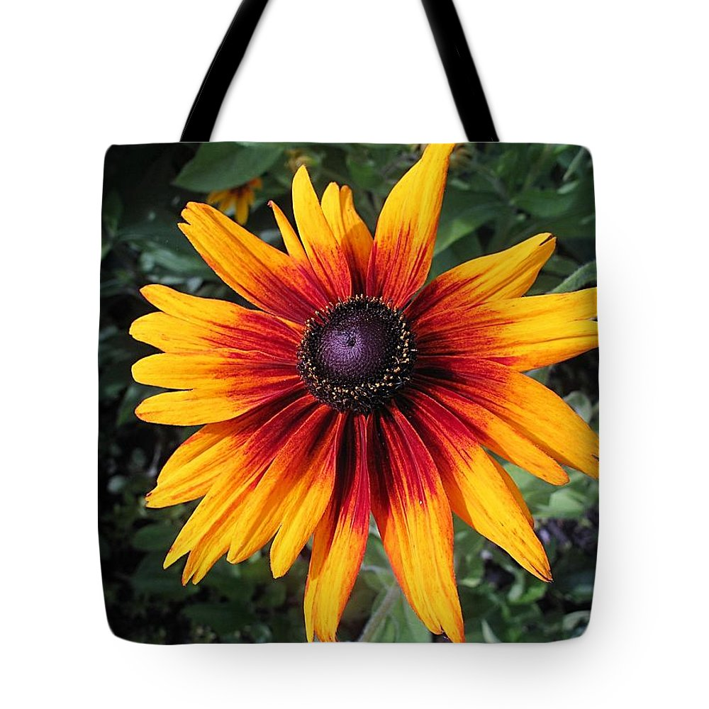 Coneflower Tote Bag featuring the photograph Wild And Crazy Coneflower by Monnie Ryan