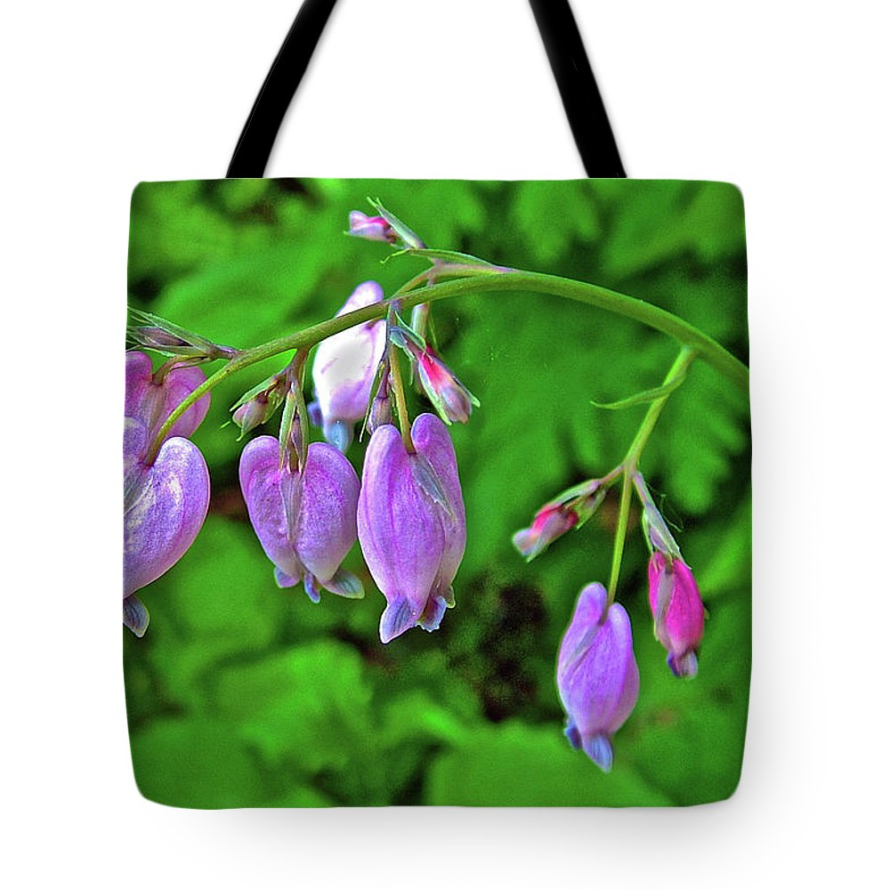 Wild Bleeding Heart In Big Fir Campground Near Ridgefield Tote Bag featuring the photograph Wild Bleeding Heart In Ridgefield, Washington by Ruth Hager